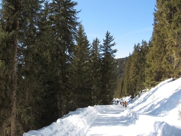 Lutherkopf u. Durakopf 14.03.2010 (34).jpg